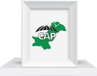 Constructors Association of Pakistan